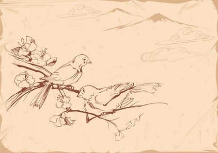 Dibujado a mano ilustración de aves en la vendimia