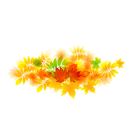 baner: abstract bright autumn leaves baner vector illustration isolated on white background