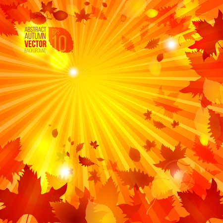 spot the difference: simple autumn template on rays background vector illustration good for your warm design