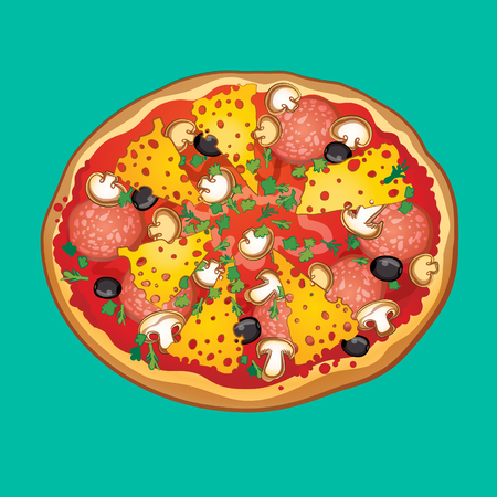 salami: pizza with salami, cheese mushrooms olives and herbs, vector illustration, part of food collection