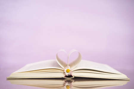 silhouette coeur: Opened book and heart shape