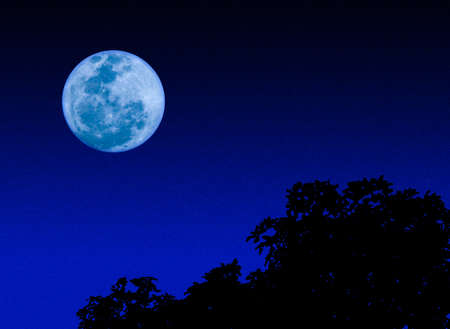 full moon romantic night: Moon in the dark Stock Photo
