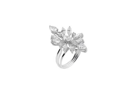 diamond stones: diamond ring Stock Photo
