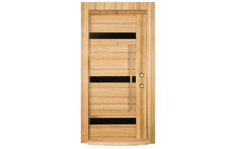 steel door: steel door