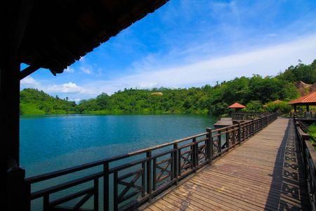 beautiful  wooden  bridge  scenery  at  the   park