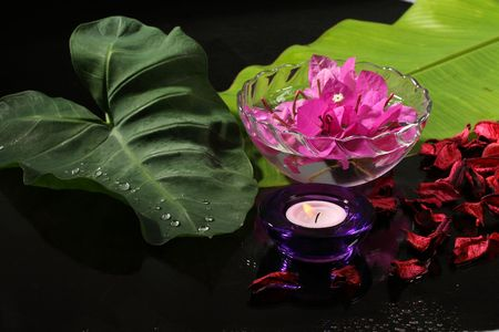 Spa     with    flower  and  candle     on     black     background  Stock Photo