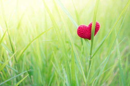 Alone Red heart in everywhere.