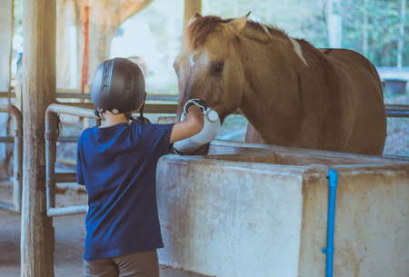 A liitle boy take care of his horse after being trained in a riding school. Focus on boy.