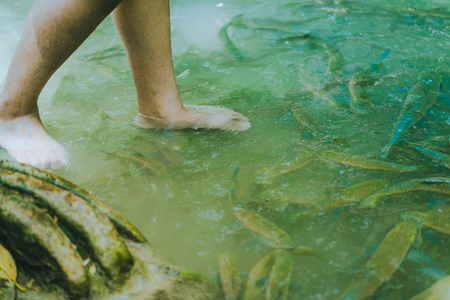 Fish spa, clean foot, healthcare concept with child at Arawan waterfall Kanchanaburi, Thailand Stockfoto - 101219754