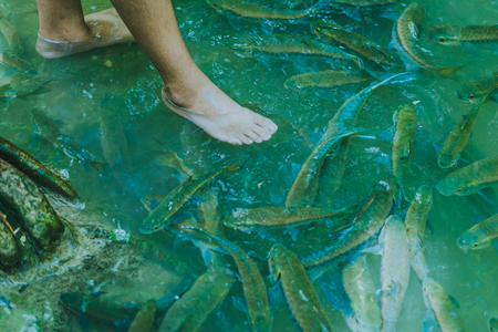 Fish spa, clean foot, healthcare concept with child at Arawan waterfall Kanchanaburi, Thailand Stockfoto