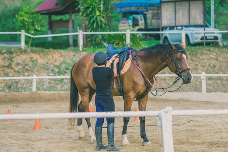 The female trainer is training the young horse for the tame in riding school.