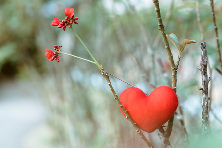 A little red heart pillow on dry tree.