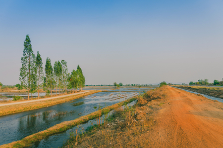 View of Water management in the rice fields from the irrigation canal before planting in Kanchanaburi, Thailand.