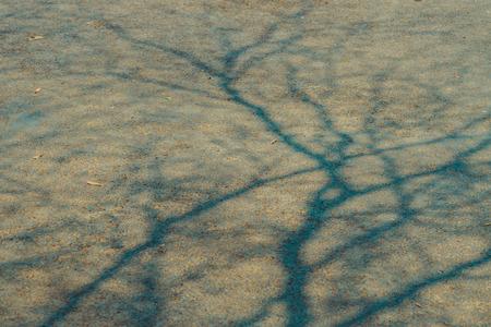 De schaduw van de boomtakken die in de zomer van Thailand à·no op de wegdekvloer bij de parkeerauto vertrekken.