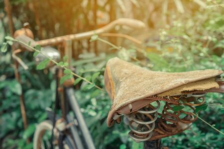 Antique rusty bicycle parked for decoration in garden