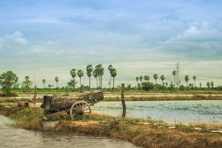 A big timber placed on the old cart look like a cannon at the rice field.