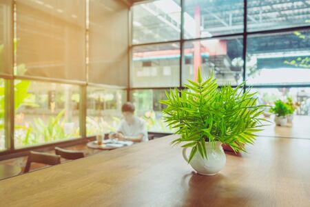 Artificial plants or plastic tree on table for decoration and welcome for customers in coffee shop.