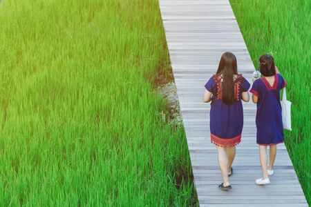 Back view of two female friends walk and take photography along the bamboo path that crossed through the fields in the evening before the sun set down on the horizon.
