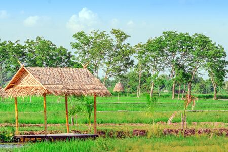 The resting huts constructed from bamboo and thatched roofs for relaxing in the rice fields. Stockfoto
