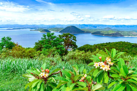 Frangipani flower or plumeria flower blooming on tree with beautiful scenery of nature with a large reservoir above the Srinagarind Dam at Rai Ya Yam view point in Kanchanaburi, Thailand.