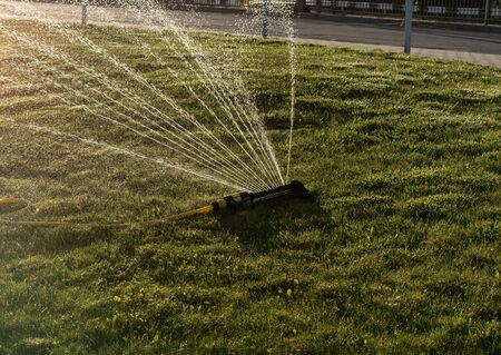 Portable, water efficient an oscillating sprinkler with metal arm sprays out a fan of water to the grass area in public streets. Watering lawn in city by an adjustable oscillating sprinkler in summer