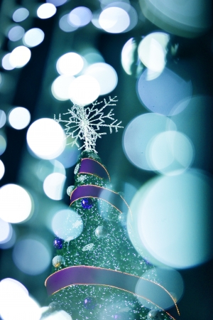 Christmas Stock Photo - 21254615