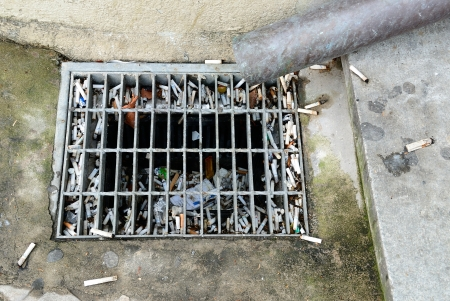 littered cigarette butts in a drain photo