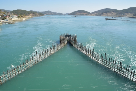 Korean Traditional Method for Fishing anchovy by flow of sea water, using bamboo fence Stock Photo