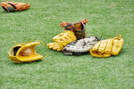 Baseball gloves photo