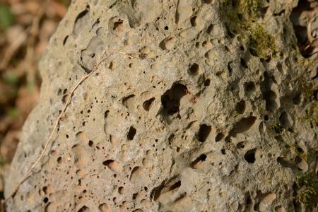 vesicular stone: Close-up of vesicular basalt surface in Jeju