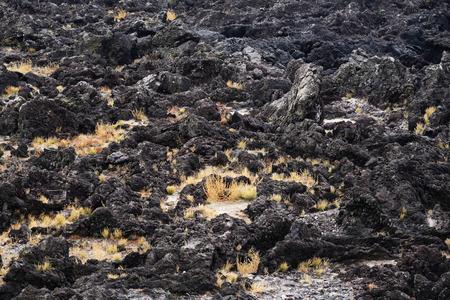 vesicular stone: black basaltic seaside in Jeju Island