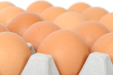 chicken farm: closeup of eggs on tray, isolated on white Stock Photo