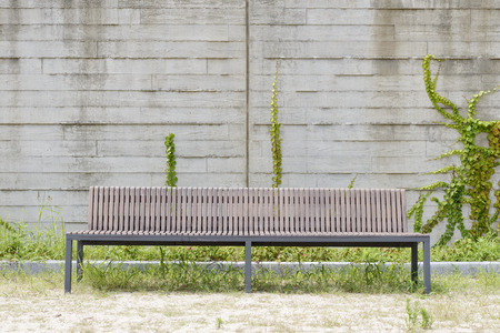 long bench in front of a white wall with climbing vine photo