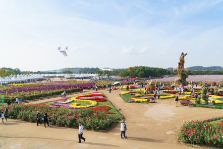 incheon: Incheon chrysanthemum flowers festival in dream park Editorial