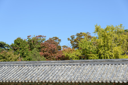 wood pillars: tiled roof and trees with clear sky in autumn