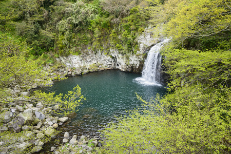 Cheonjeyeon No. 3 cascade. Cheonjeyoen falls (means the pond of God) consists of 3 falls. A variety of plant life, inclued Psilotum nudun, thrives around the falls. in first cascade, It is one of the most famous cascade in Jeju Island, in Korea.