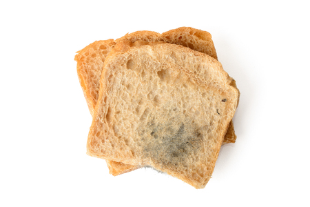 close-up of black mold on a bread, isolated on white
