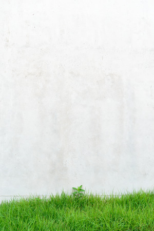 exposed concrete: Surface texture of exposed concrete finishing method with green lawn Stock Photo
