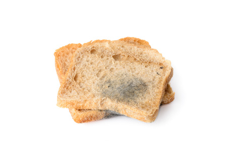 black mold: close-up of black mold on a bread, isolated on white