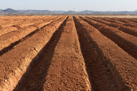 furrow: ploughed brown fertile farmland in a spring