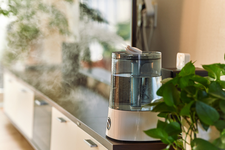 Ultrasonic cool mist humidifier for home on a table