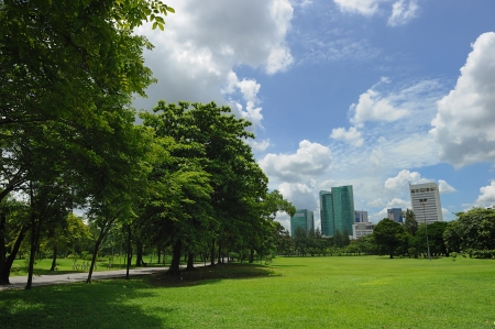 city park with modern building background in bangkok photo