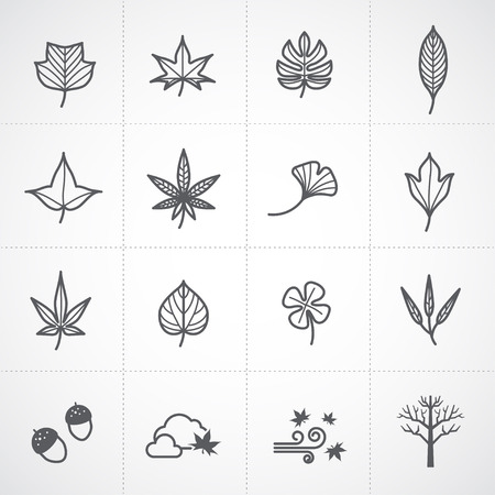 winter wheat: Autumn and leaf icons set Illustration