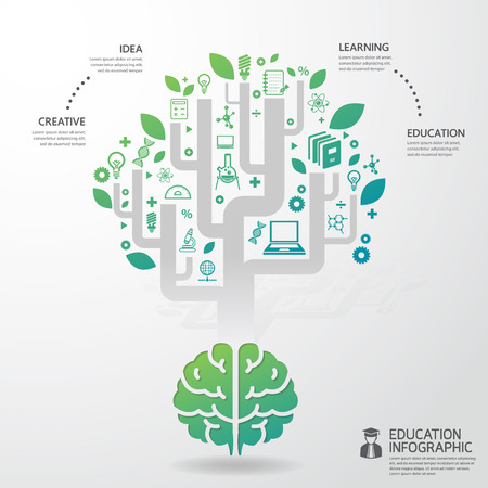 infographic Template brain education and science concept vector illustration Иллюстрация