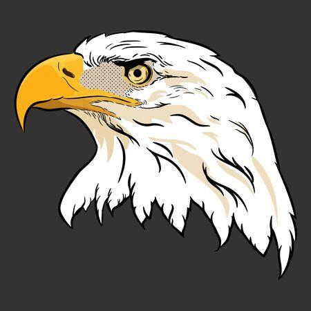 Águila calva americana con bandera, vector de cabeza de águila dibujada a mano.
