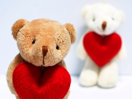 Valentine litlle bear dolls photo