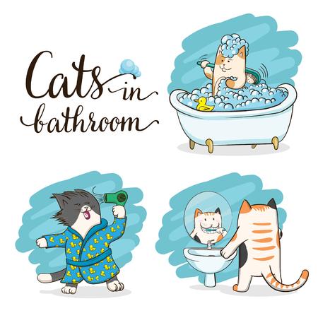 욕실에있는 고양이