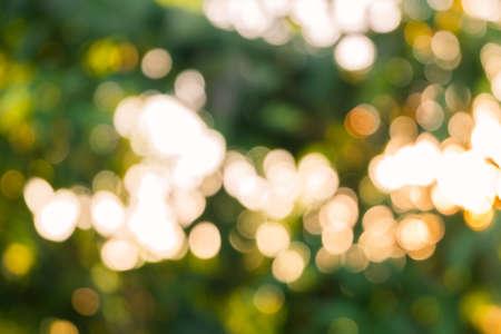 sky brunch: Nature Green blur with golden bokeh - Tree bokeh - Blurry bokeh defocused lights Stock Photo