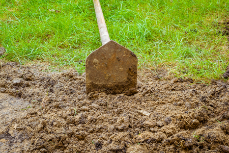 shovel on Brown Dirt with grass in the garden