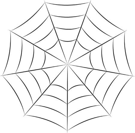 cobweb: Cobweb Illustration